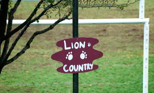 Lion Country - Horace Mann Homecoming 2006