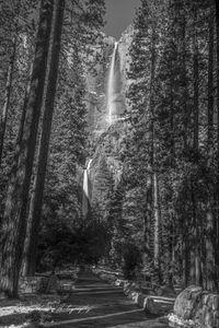 Yosemite Falls.jpg