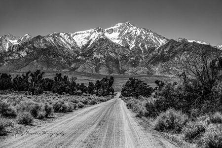 Manzanar to the Sierras BW.jpg