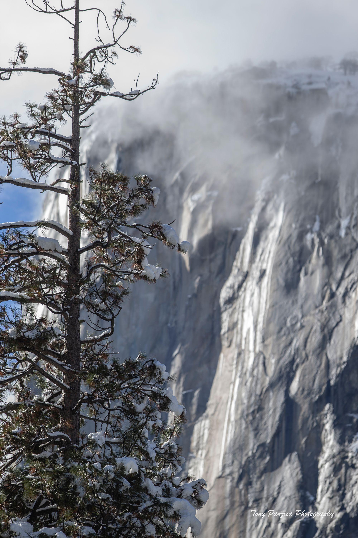 1. El Cap Summit in Fog.jpg