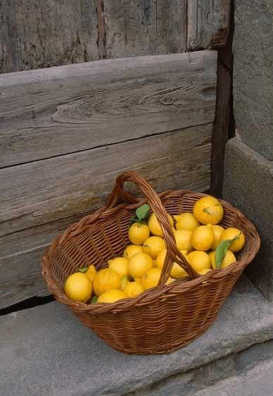 1Italy_lemons_Cinque_Terra
