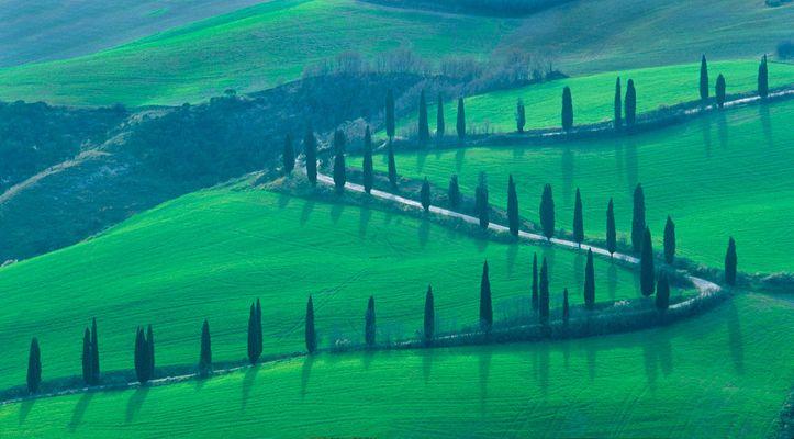 1italy_13X19toscana_green