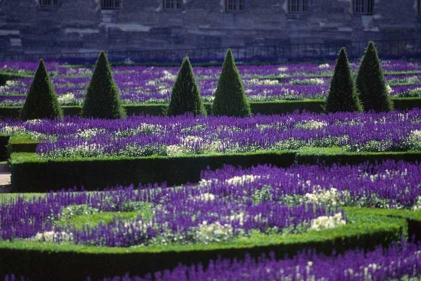 1France_versailles_gardens
