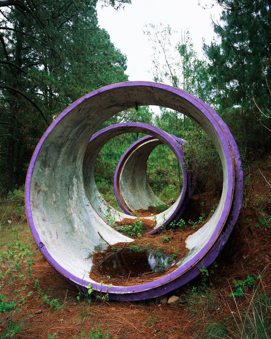 Concentric Circles, 2012