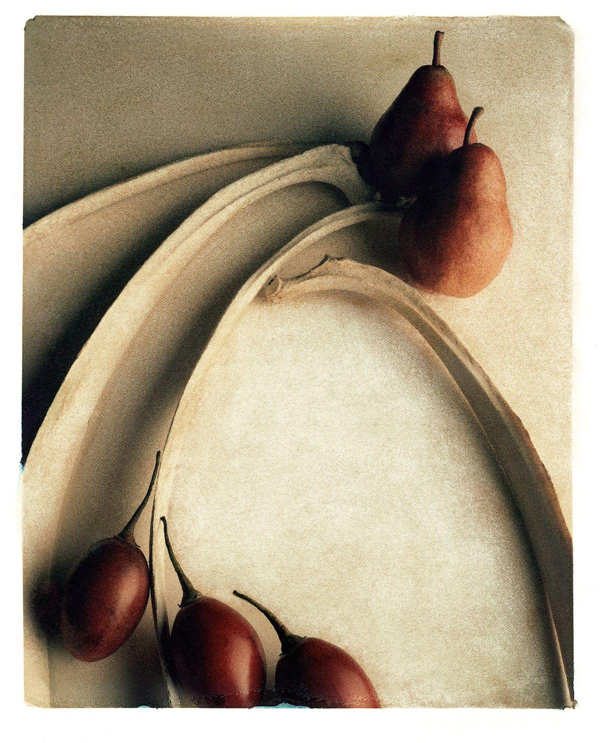 8x10TF 03 Pears_Tamms_Bones.jpg