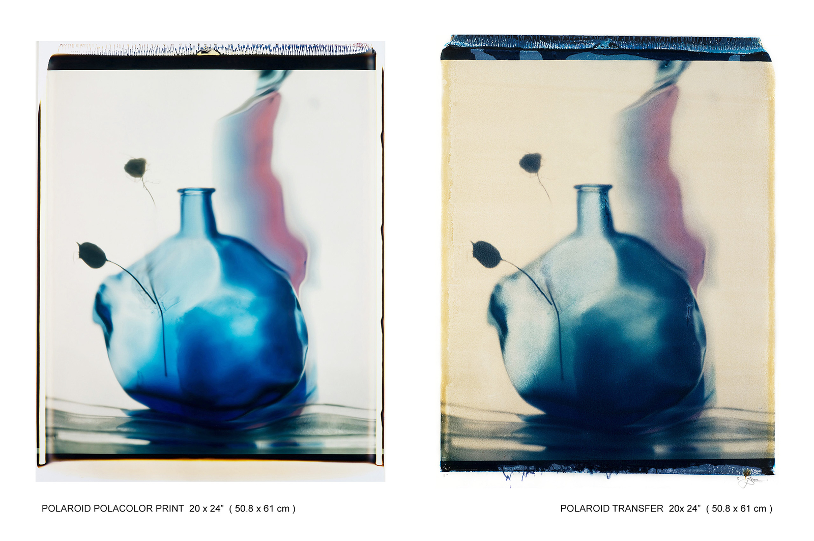 POLAROID BLUE BOTTLE DRY FLOWER DOUBLE.jpg