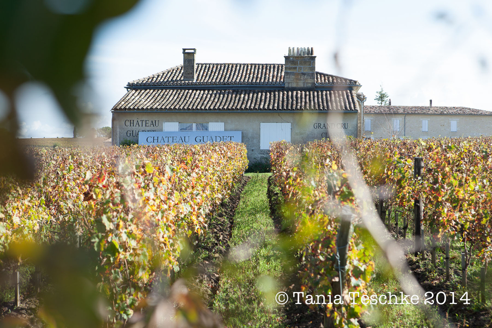 1tania_teschke_photography_chateauguadetwhitepress_0570