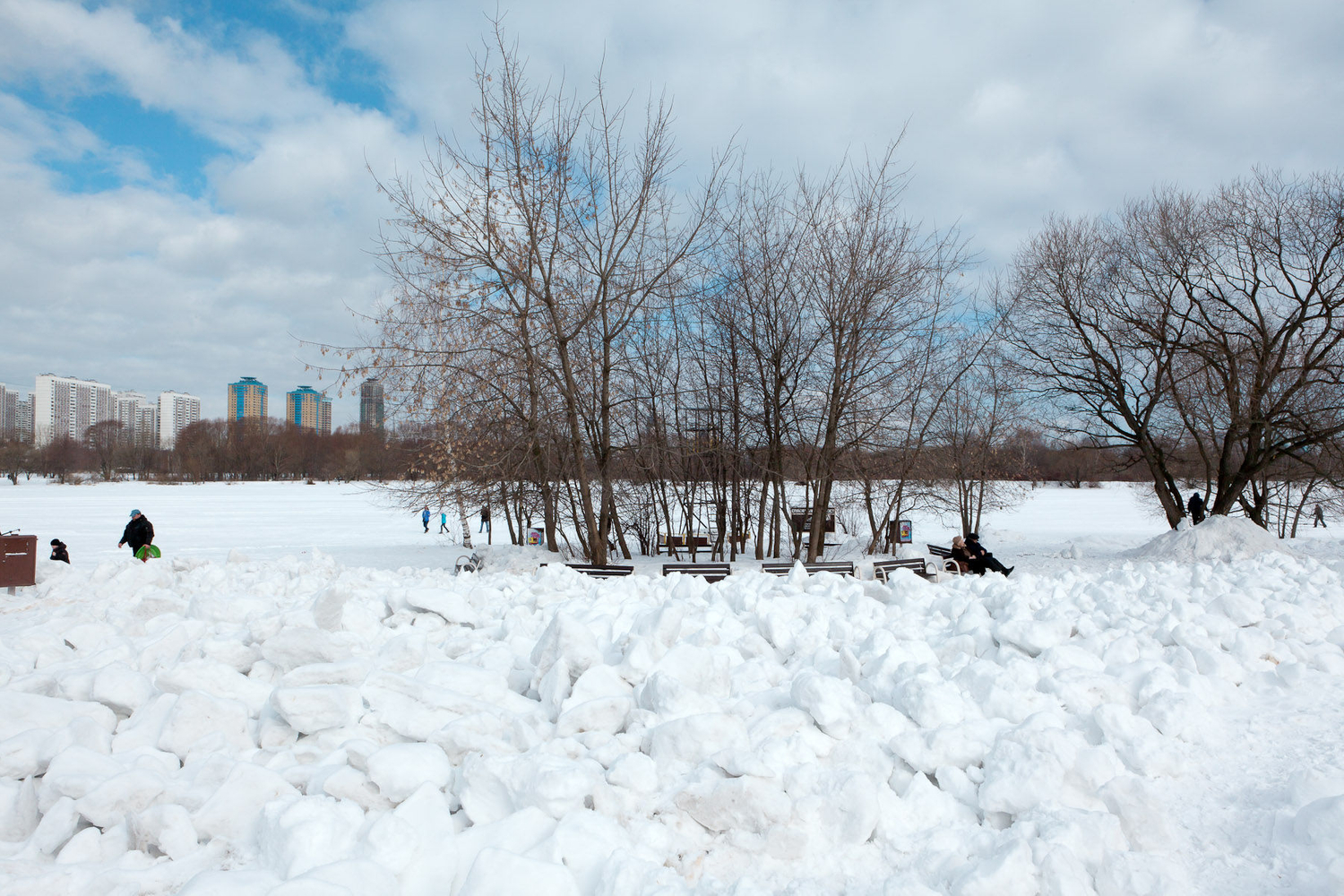 1moscow_winter_urban_leisure_benches_trees