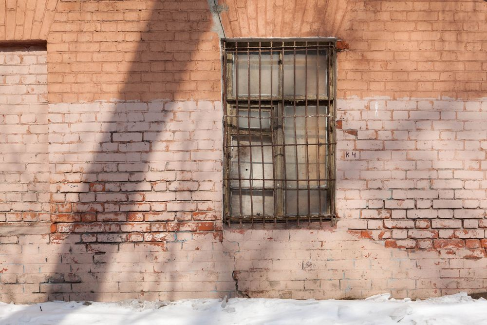 1moscow_brick_wall_tree_shadow