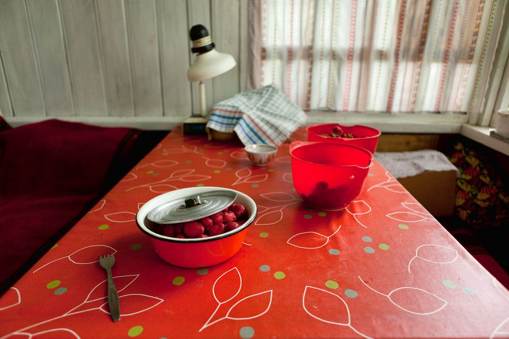 1almaty_red_strawberry_bowl_table
