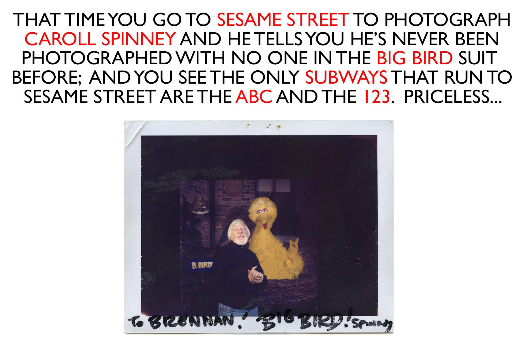SPINNEY BIG BIRD HOMEPAGE.jpg