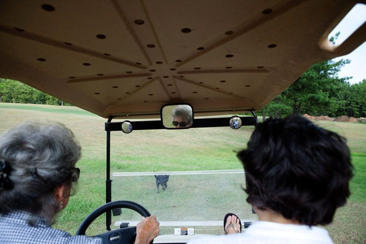 Driving at Hilda and Blue's