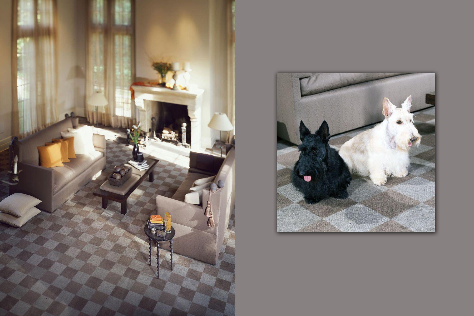 1stein_livingroom.jpg