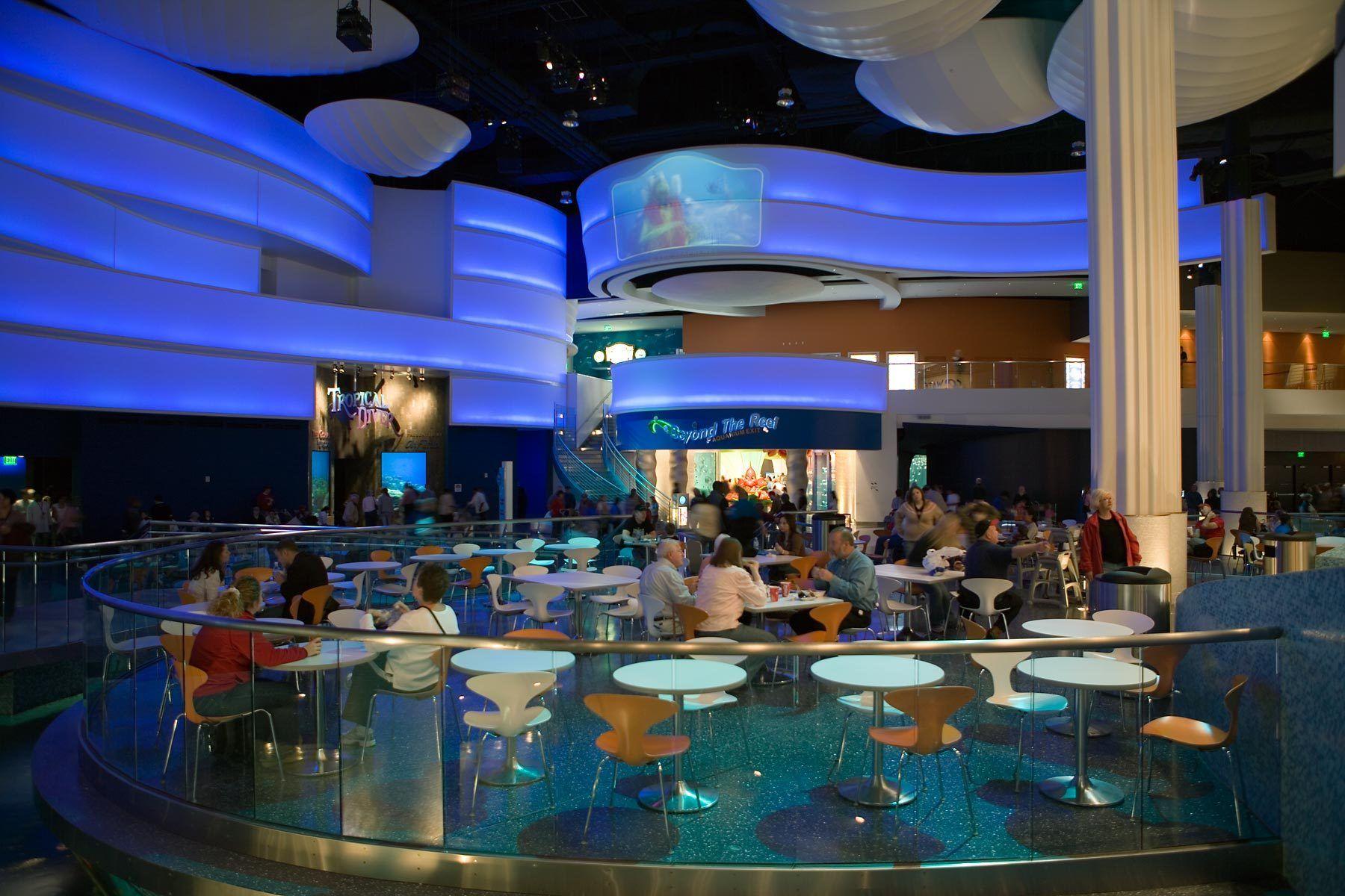 1ga_aquarium_010906_08.jpg