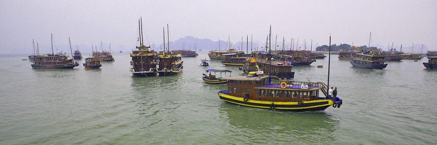 1MSM_Vietnam_l_003a