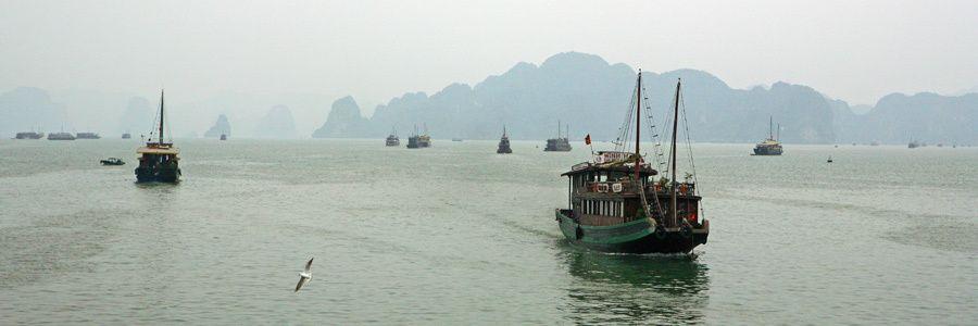 1MSM_Vietnam_l_027ap