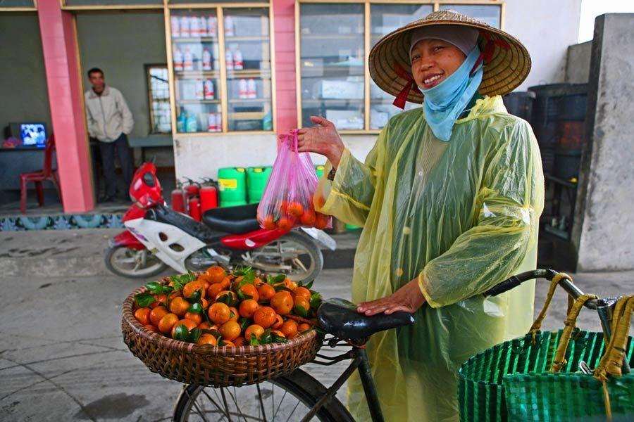 1MSM_Vietnam_l_244a