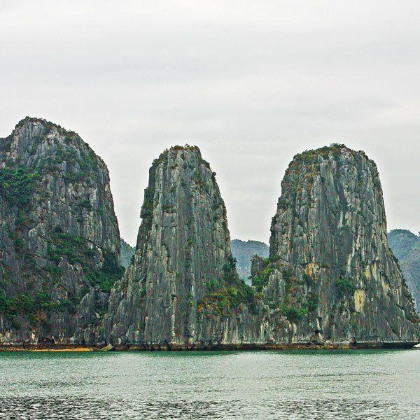 1MSM_Vietnam_l_237a