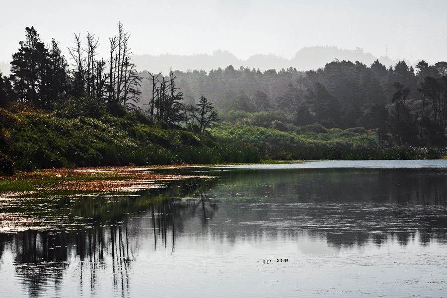 Cleone Lake, Mendocino