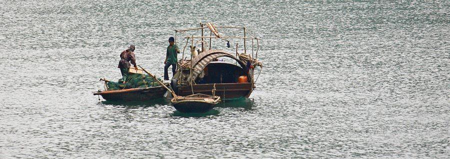 1MSM_Vietnam_l_163a