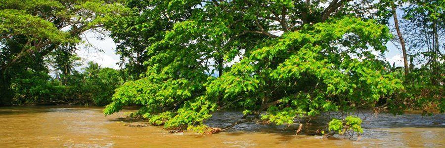 1Augusan_River_Tour_170ar