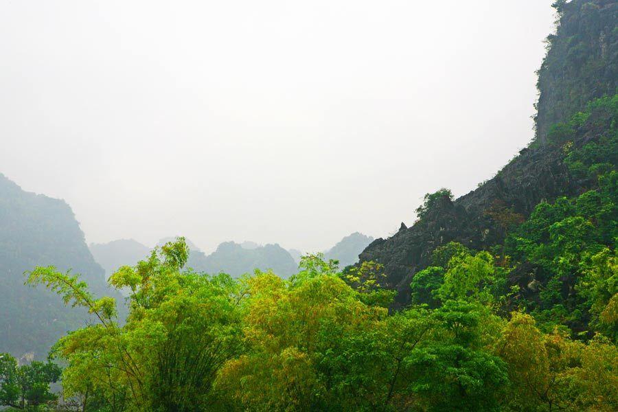 1MSM_Vietnam_l_294
