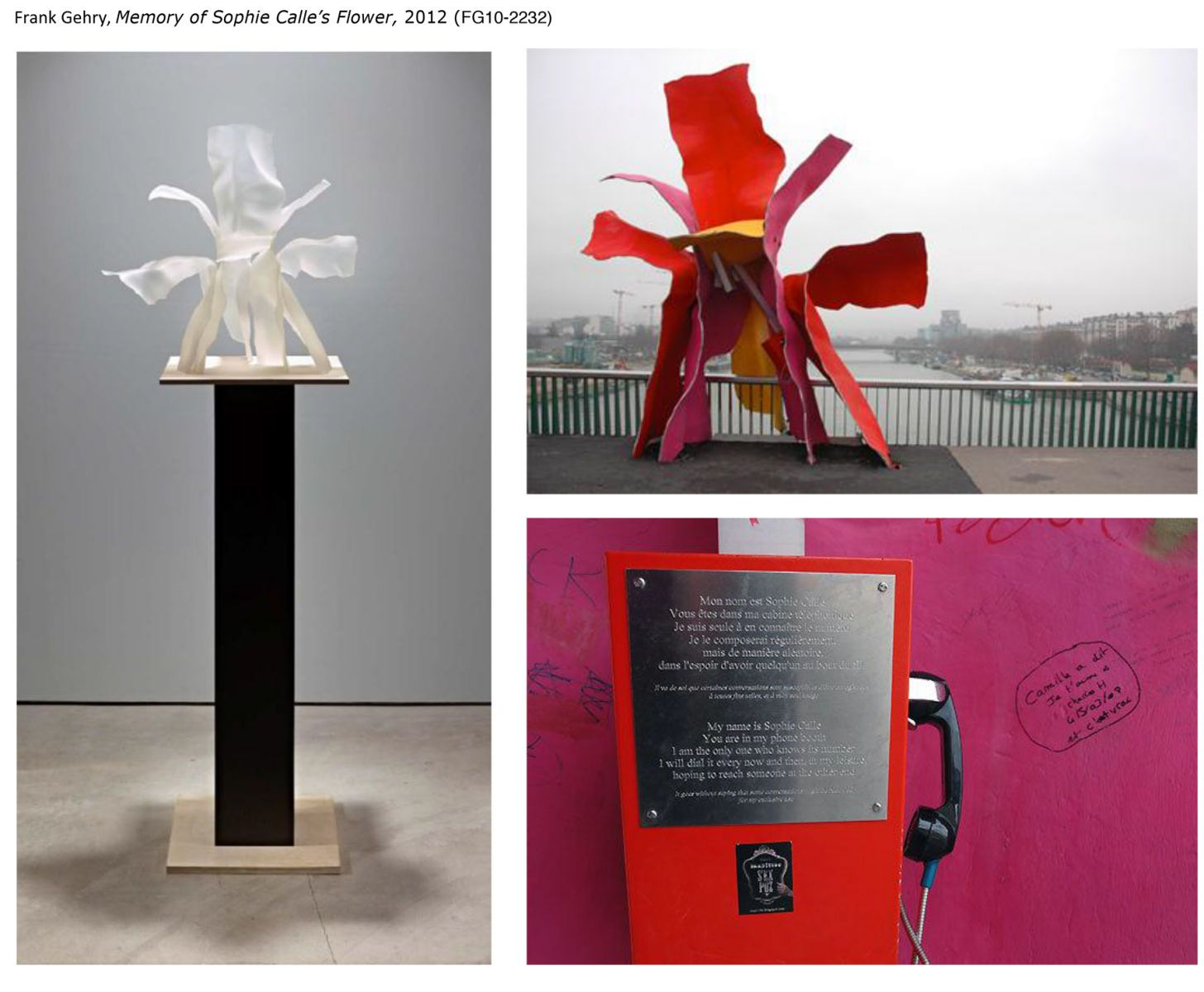 6_1architecture___memory_of_sophie_calle_s_flower.jpg