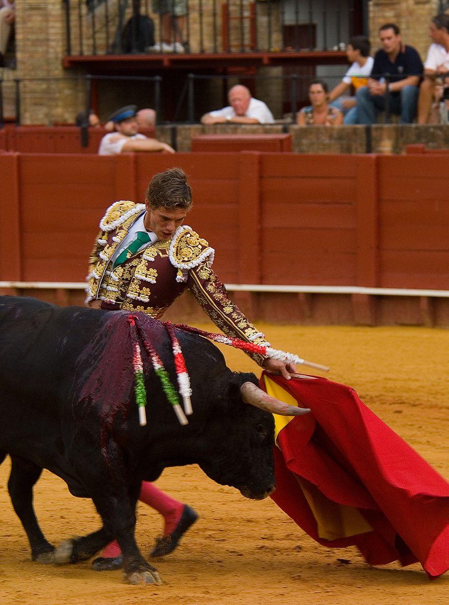 1bullfighter_1.jpg