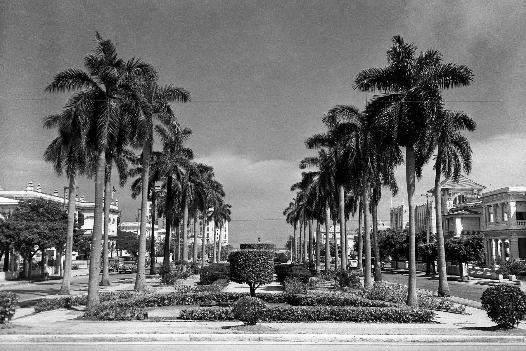 Royal Palms, El Vedado, Havana 1954