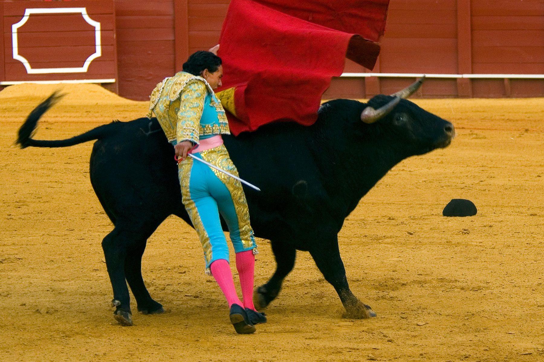1bullfighter_2.jpg
