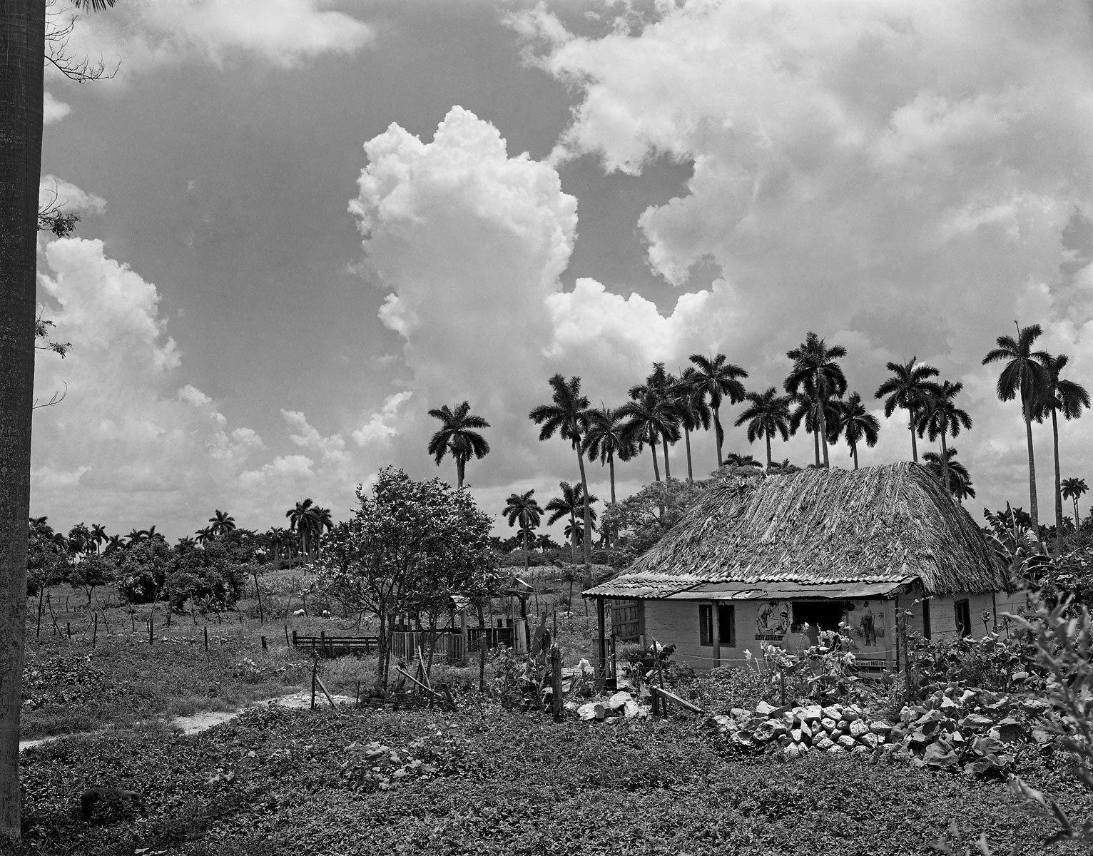 Bohio 1956