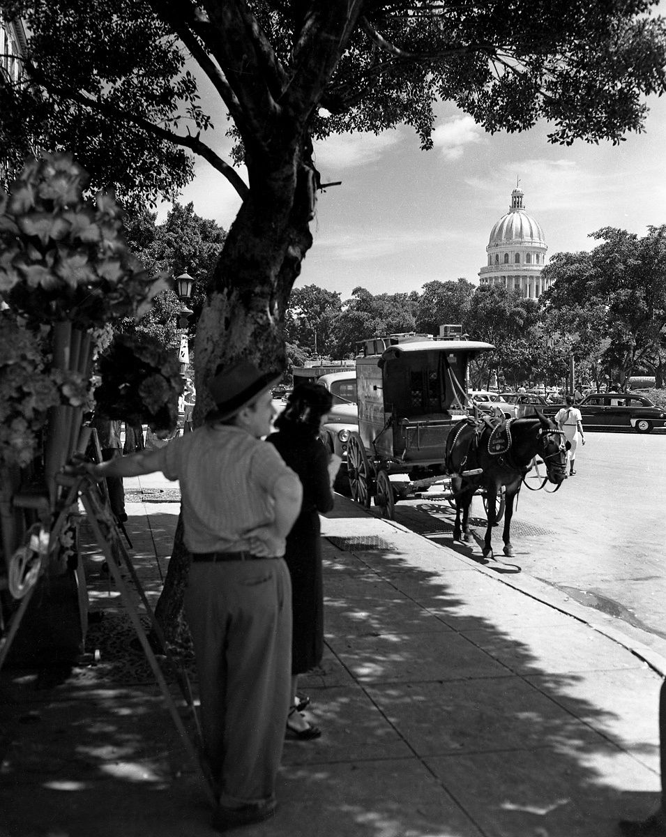 Central Park, Havana 1954