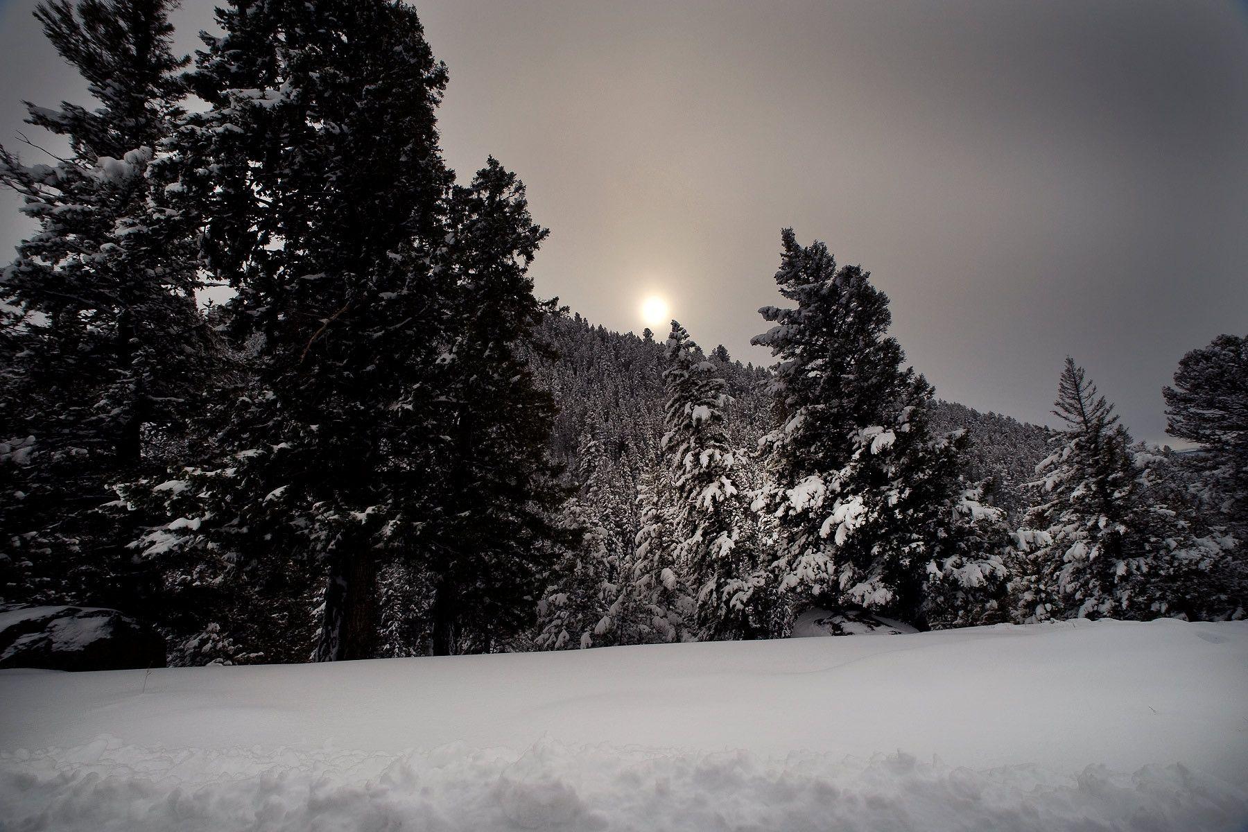 1yellowstone_snow.jpg