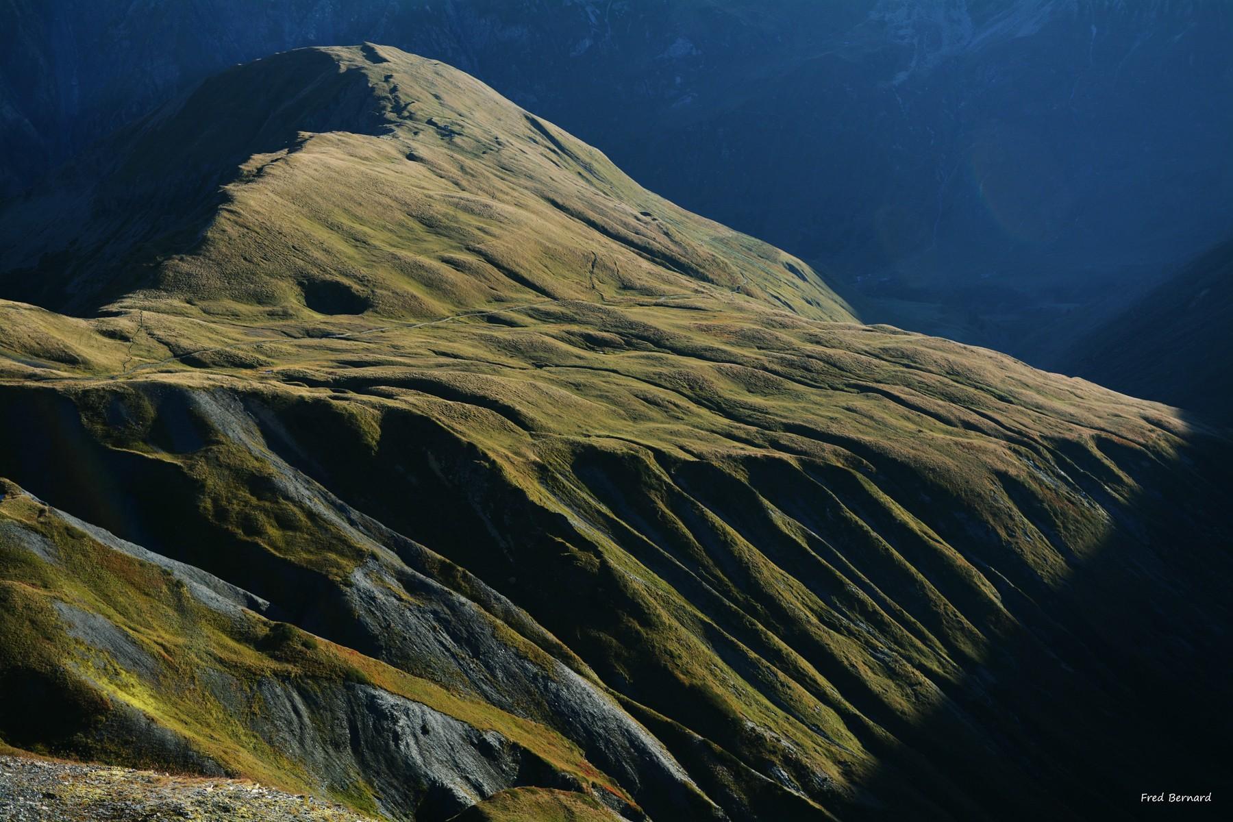Steppes d'altitude. Suisse