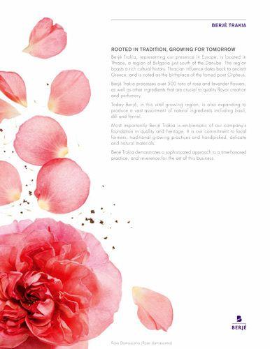 berje essential oils kiyoshi togashi