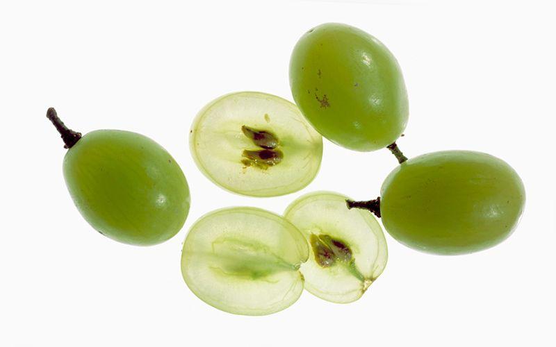green grapes kiyoshi togashi