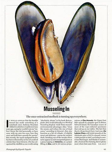 mussel kiyoshi togashi