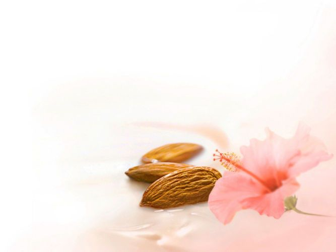 dove nutrium purely pampering hibiscus almonds kiyoshi togashi