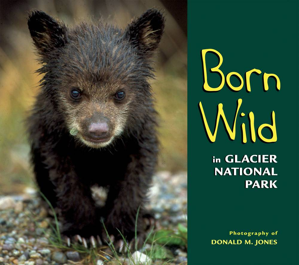 Born Wild In Glacier National Park  Soft bound $12.95 + $3 S/HSIGNED