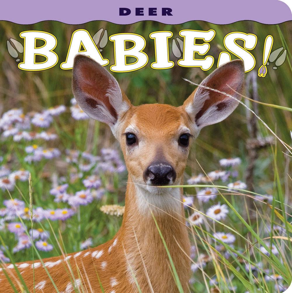 Deer Babies Infant Board Book $8.95 + $3 S/H