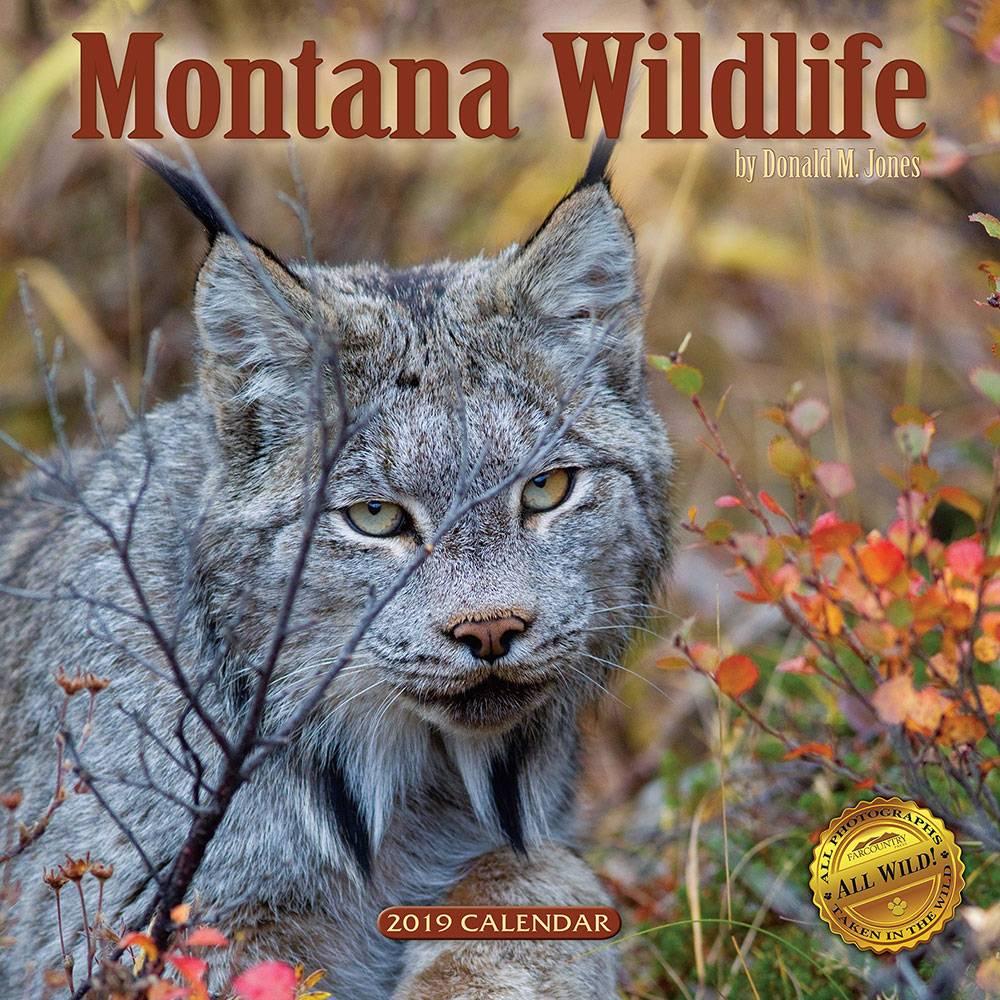 2019 Montana Wildlife Calendar  $12.95 + $3.50 S/H