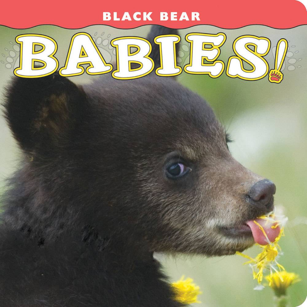 Black Bear Babies $8.95 + $3 S/H   Infant Board Book