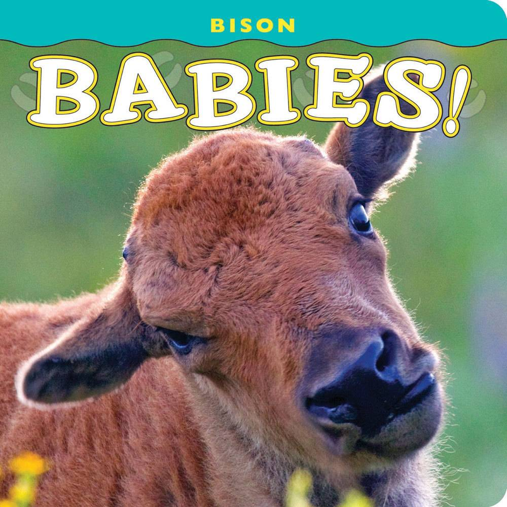 Bison Babies $8.95 + $3 S/H  Infant Board Book