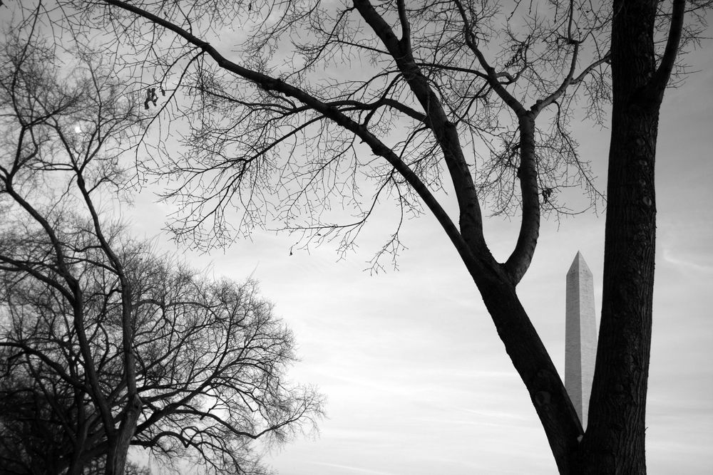 washington, dc 2011 #1a edited.jpg