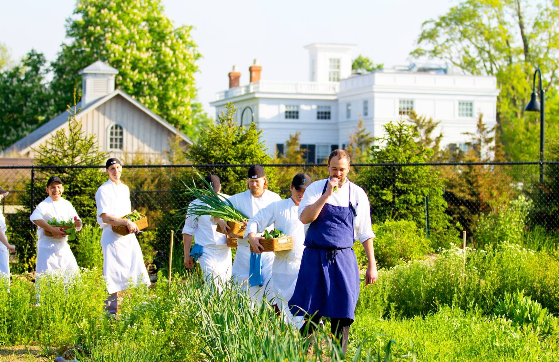 1toppingrosehouse_farm_chefs