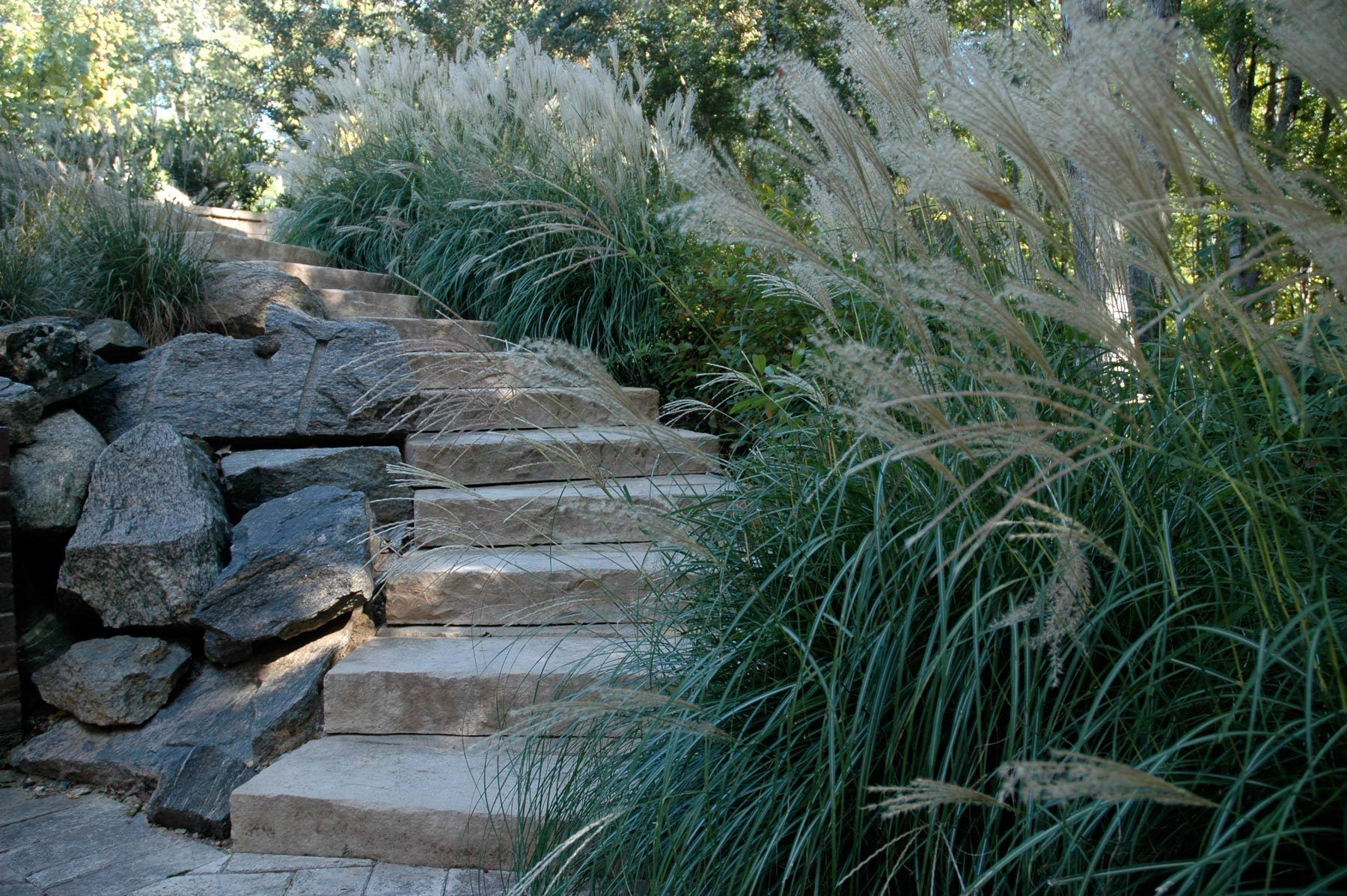 1lower_terrace_steps_up.jpg