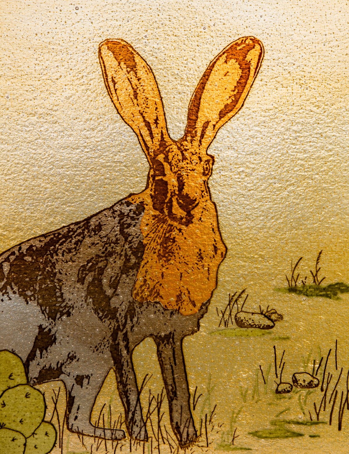 Rabbit-2586.jpg