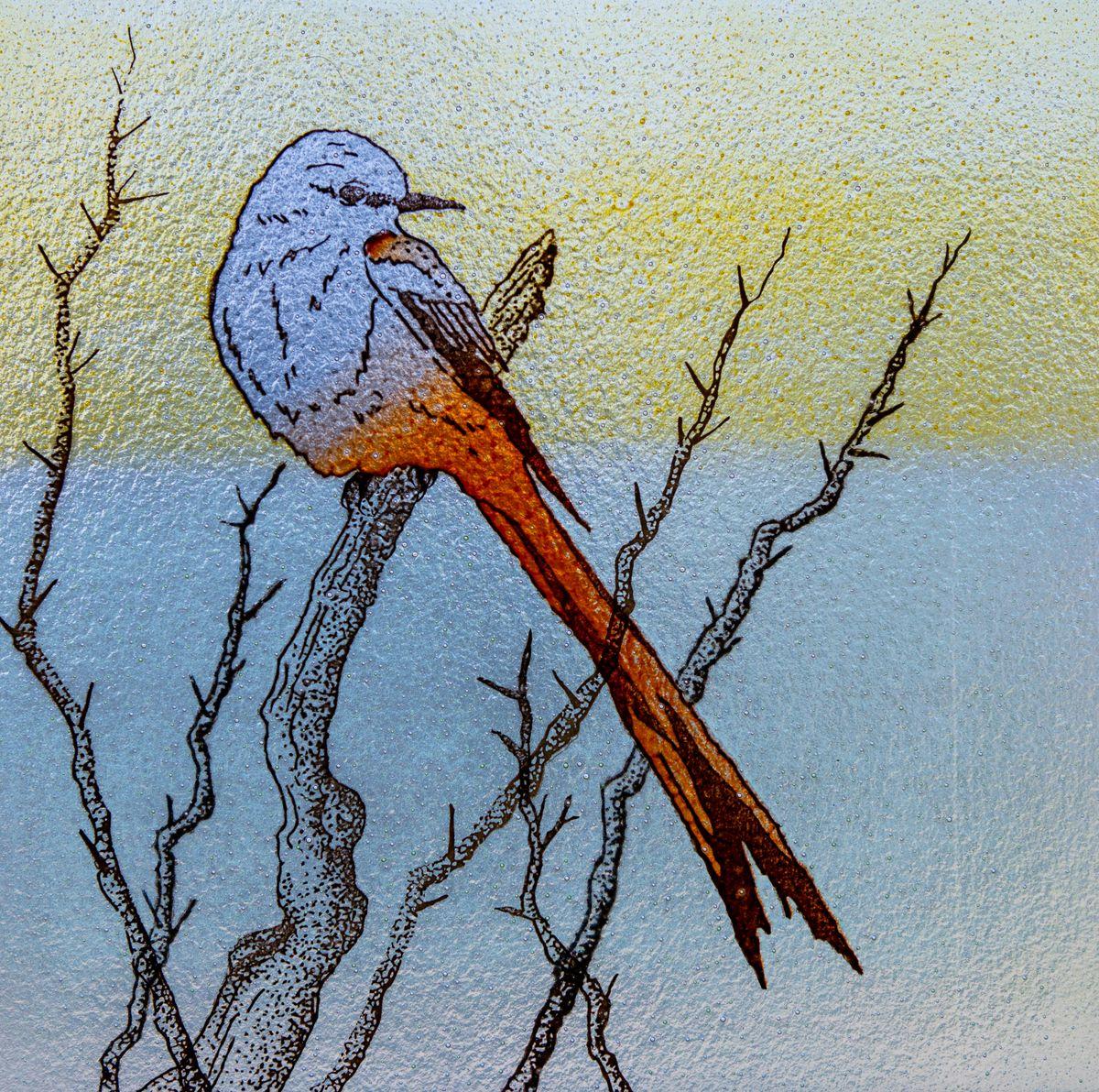 Bird-2597.jpg