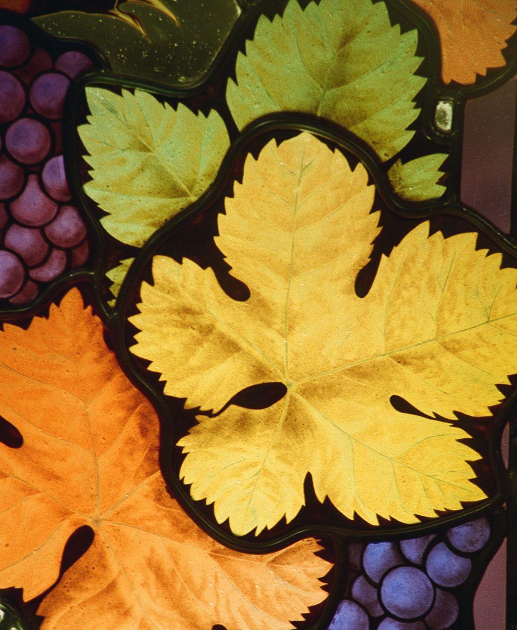 WineWindowDetail01.jpg