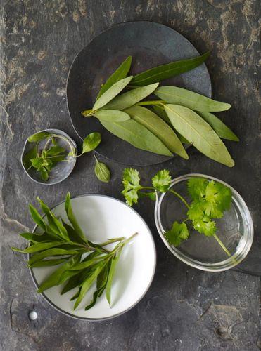1ch0_herbs_03.jpg